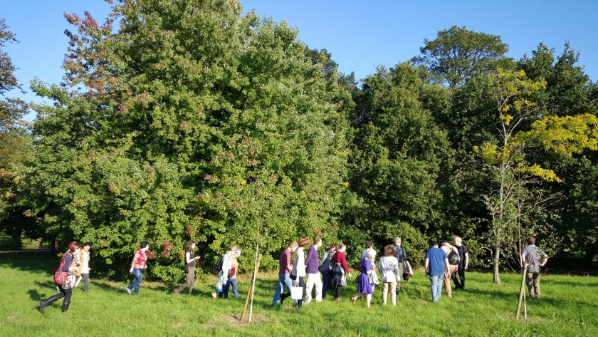 A walking tour group visits Telperion (left) and Laurelin (right) during Oxonmoot 2015.